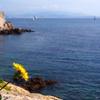 Location saisonnière à Saint-Tropez Salins